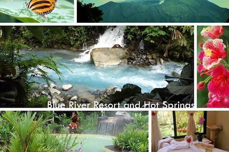 Rainforest Eco-Adventure Resort