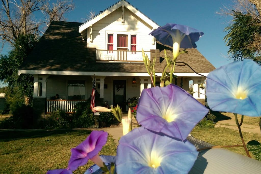 You can park right at the end of the sidewalk or to the left side of the house for easiest access for loading and unloading. In 2014 the morning glories climbed right up the flag pole and the mailbox. August is time for the morning glories to bloom.