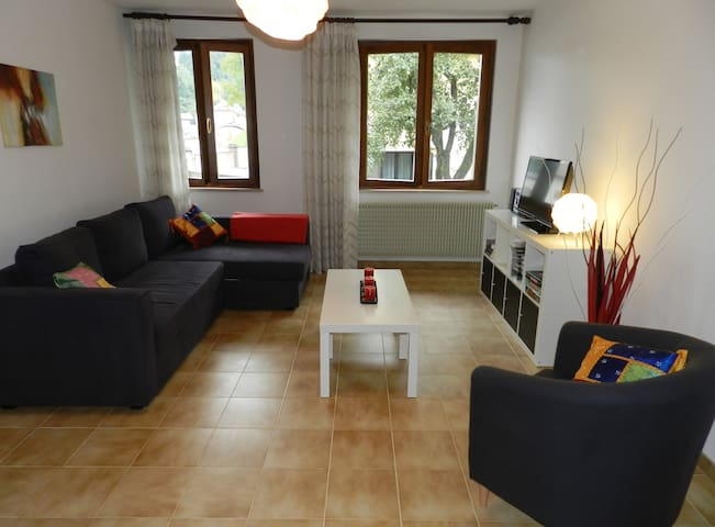 A place to call home in the Alps! - Chiaulis di Verzegnis - Apartamento