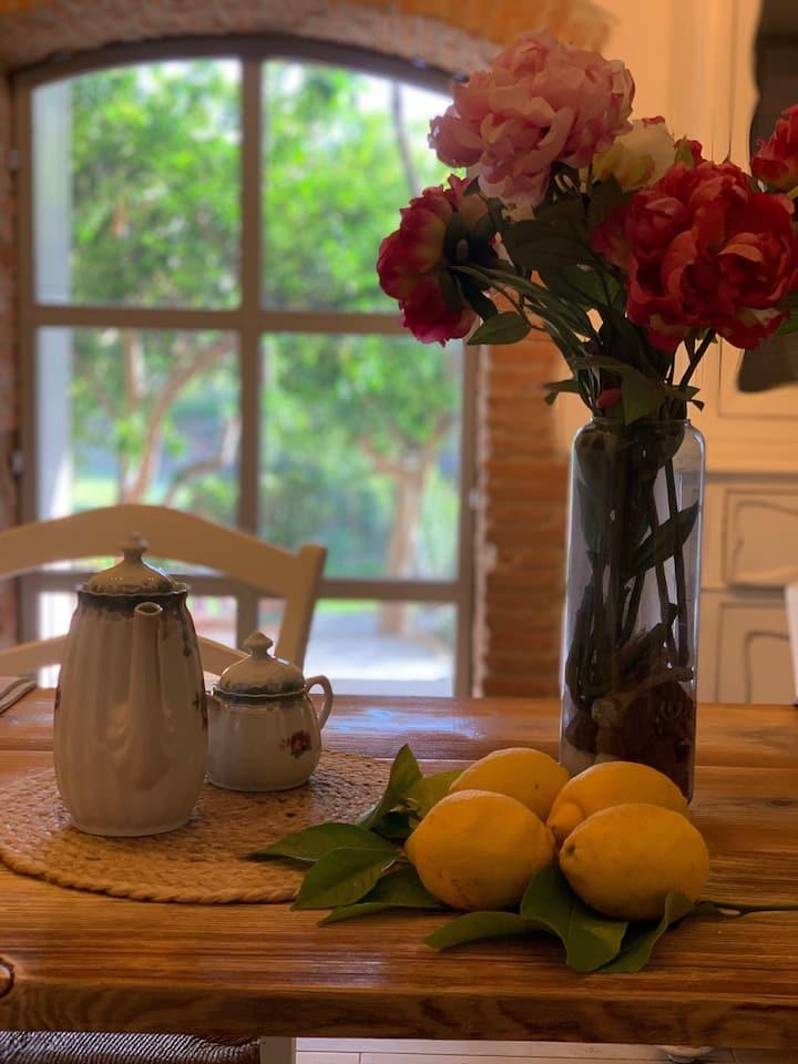 Il giardino dei limoni B&B