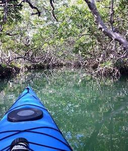 Kayak the Keys with Kayak Amelia! - Key Largo - House