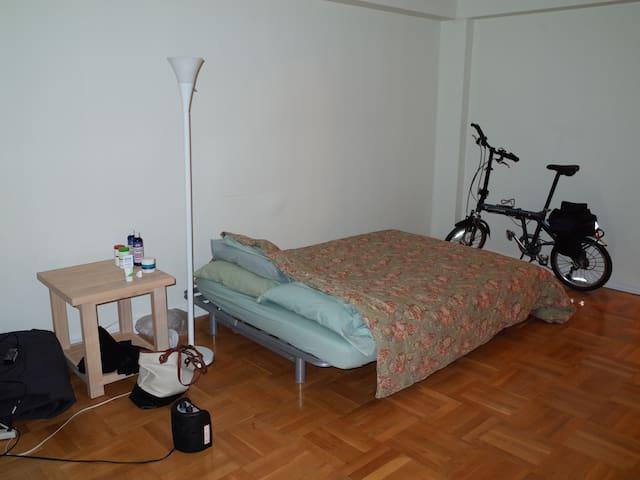 Sunny living room in Yonkers Apt - Yonkers - Wohnung