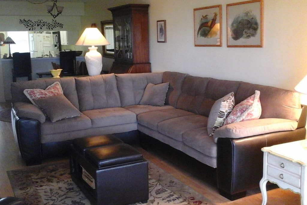 New comfortable sectional in living room