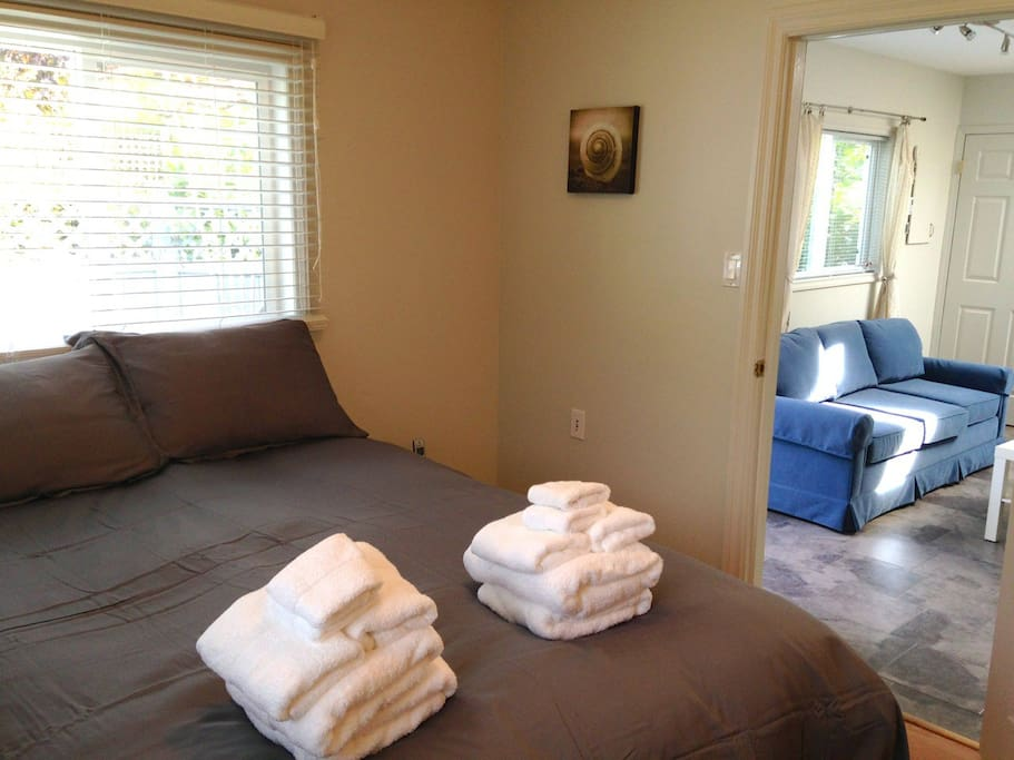 Bedroom w/ Queen size bed, euro down duvet with bamboo cover.