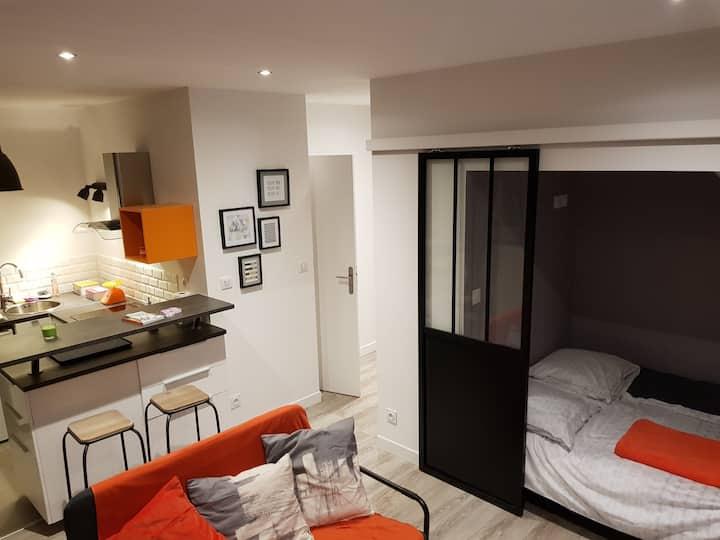 Appartement cosy, moderne dans centre Villeurbanne