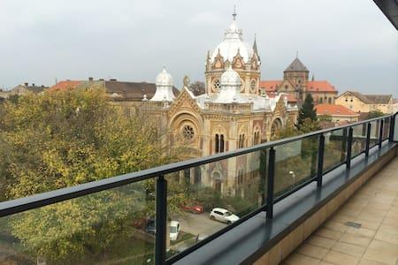 Penthouse Park - Timișoara