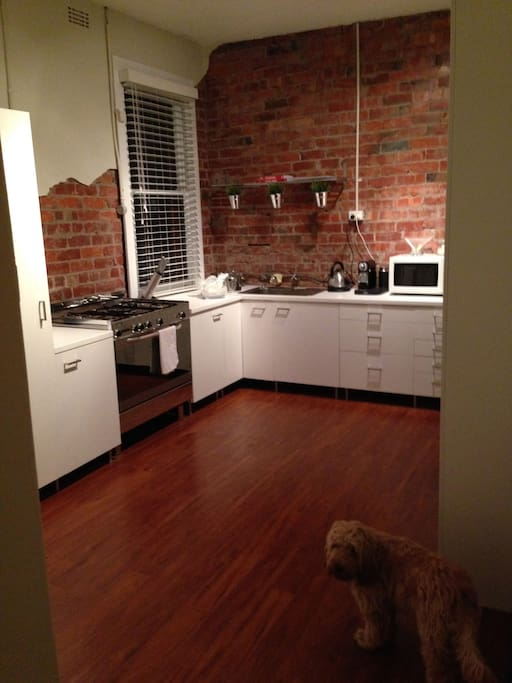 Renovated fully equipped kitchen with coffee machine and entertaining space