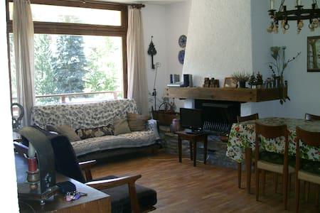 Appartamento Ponte di Legno - Ponte di Legno - Huoneisto