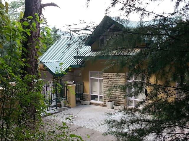 Forest hill Villa Mashobra. - Shimla