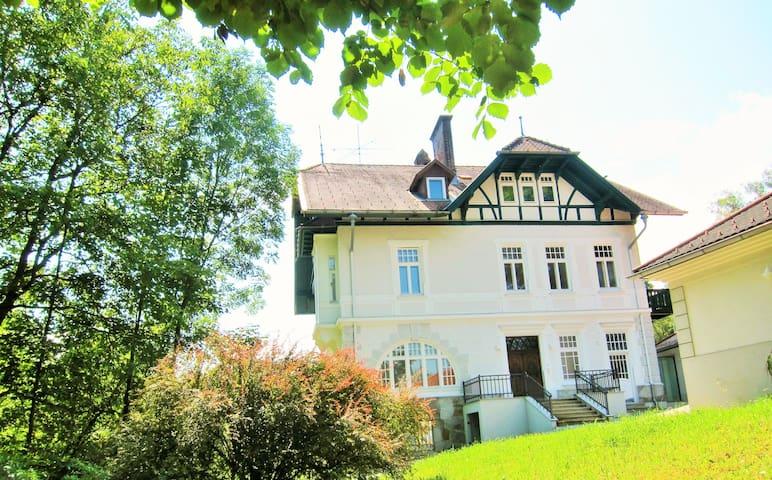Appartement NICOLETTA, Österreich - Böhlerwerk - Villa