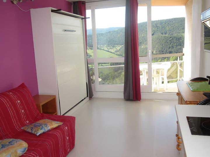 615GM - Coquet studio pied des pistes Balcon de Villard