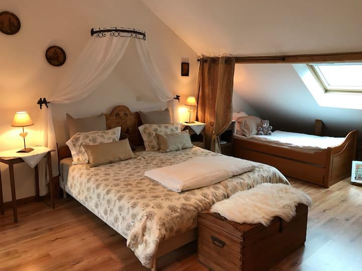 Gite  4* meublé de tourisme Centre Alsace