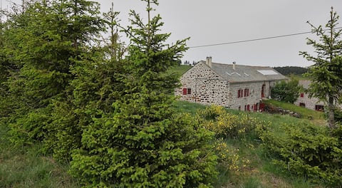 Charming farm nicely renovated Auvergne
