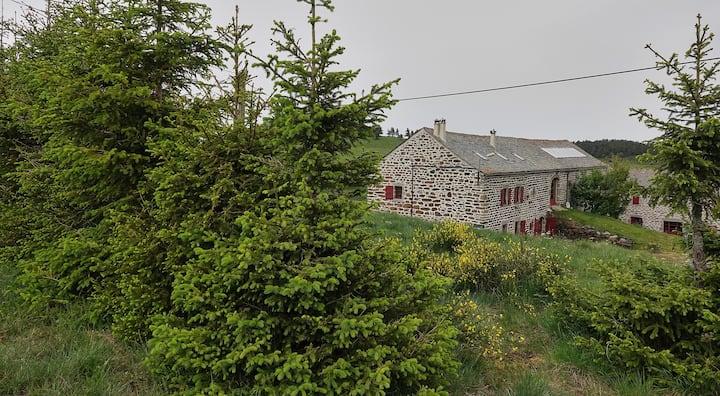 Charming farm nicely renovated Auvergne