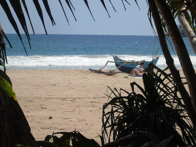 Coconut Hotel Talalla