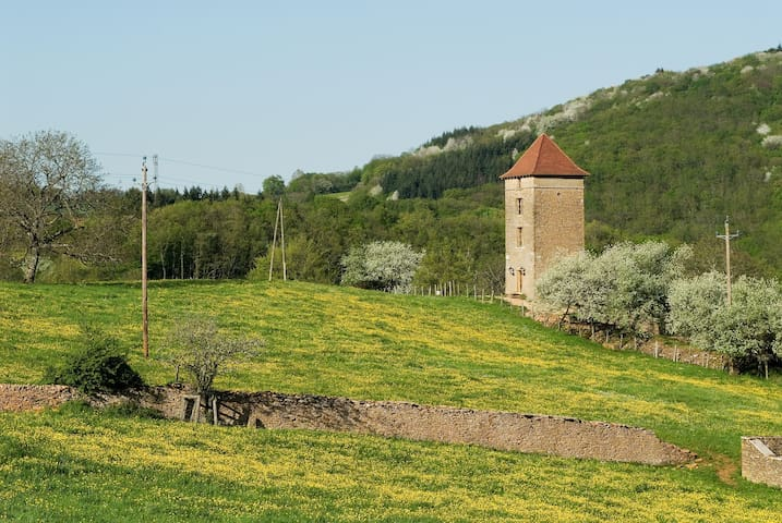 Luxury unique watch tower (Burgundy, Cluny 6 km).