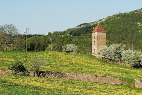 Luxury  tower + pool (Burgundy, Cluny 6 km).
