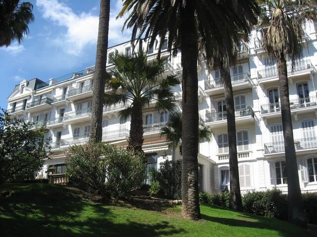 Palais,mer,verdure,internet,climatisation,Cannes
