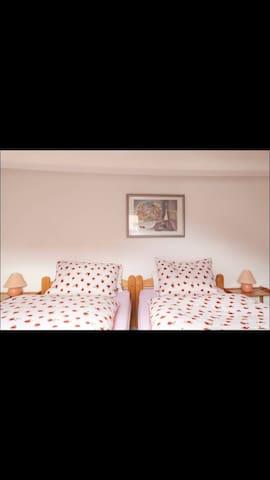 Gemütliches Zimmer in ruhiger Lage2 - Emmerthal - House