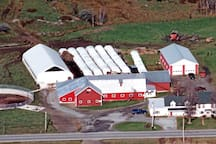 working organic dairy/maple farm