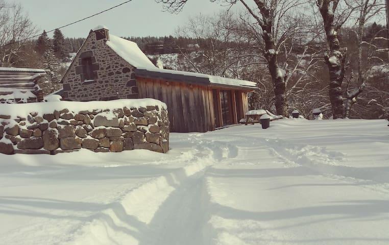 Lodge en pleine nature avec spa - Le Mont-Dore - Hus