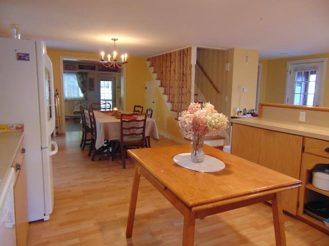 Spacious Silver Lake Lodge - Roxbury - Casa