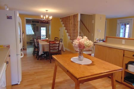 Spacious Silver Lake Lodge - Roxbury