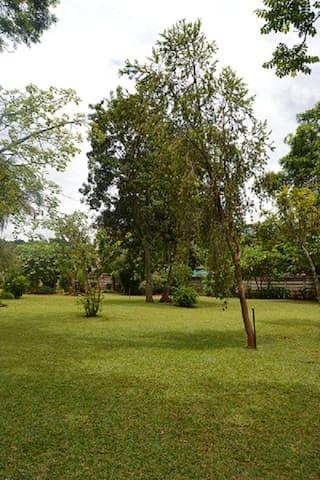 Palm Villa - Borrowdale, Harare