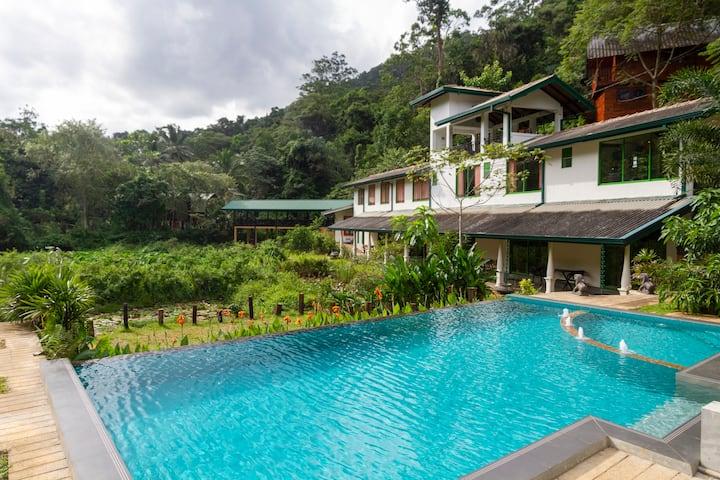Private Room on the edge of Sinharaja Rainforest