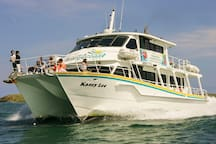 Take a Wildlife Coastal Cruise from Cowes