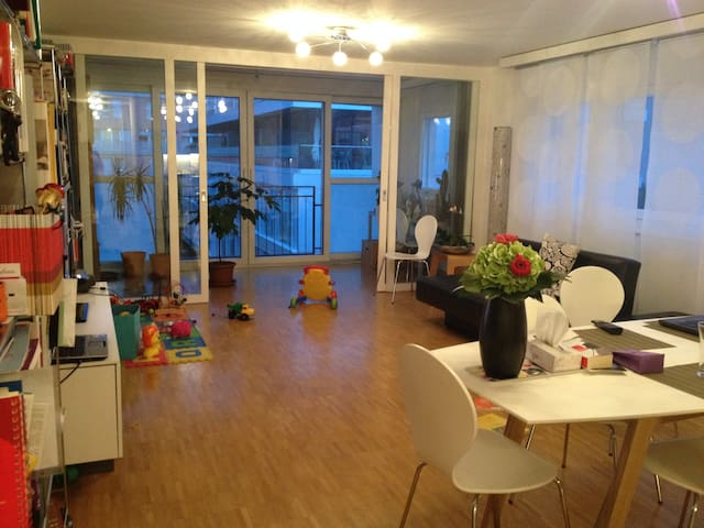 spacious, modern & family friendly - Lancy - Appartamento