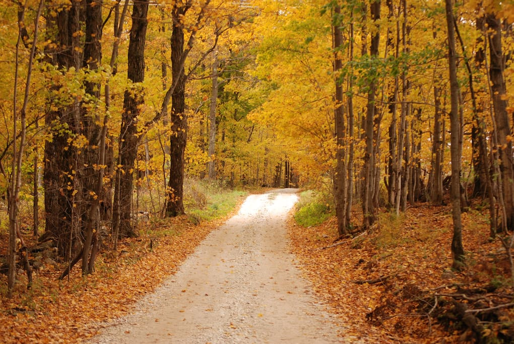 Country roads invite you to hike or take a casual stroll