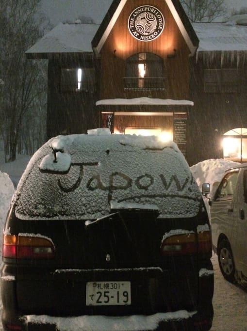 Japow awaits you!