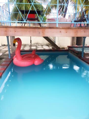Mini Mansion! Private Pool, Jacuzzi, Gazebo, Bar!