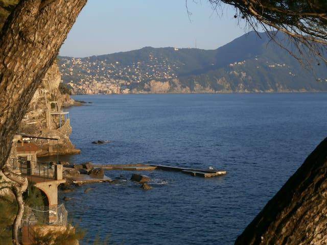 Riviera flat with private sea pools - Sori - Apartament