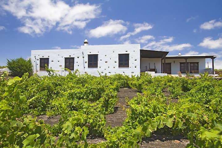 Villa TEZIGAS in Teseguite for 12  - Teseguite - House