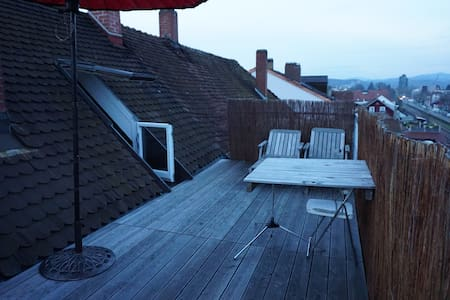 BASELWORLD Apartment with Rooftop Terrace - Lörrach - Apartament