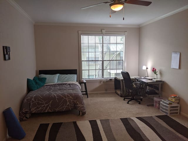 Large Private room near Midtown and Montrose