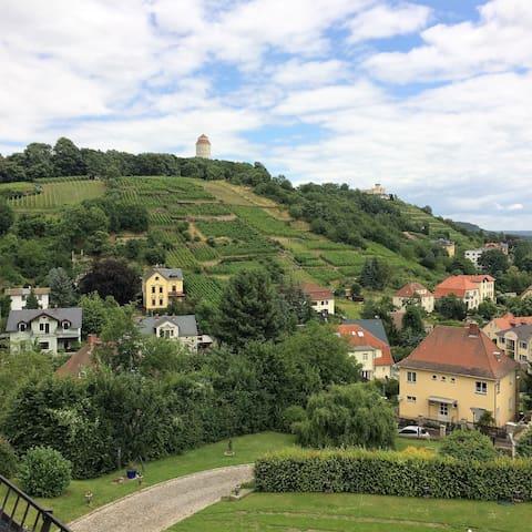 Villa in den Weinbergen mit Panorama von DresdenUG - Radebeul - Apartemen