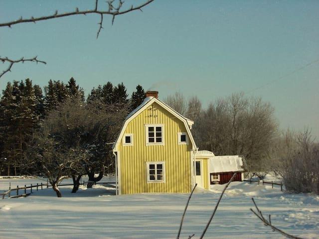 Winter - a magical season
