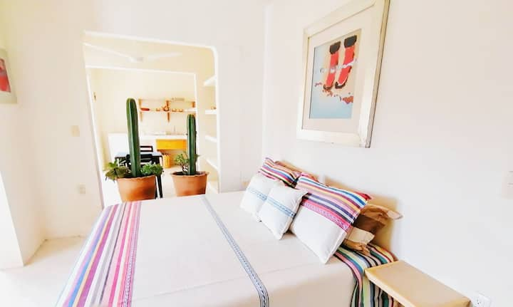 Charming Oaxacan Apartment
