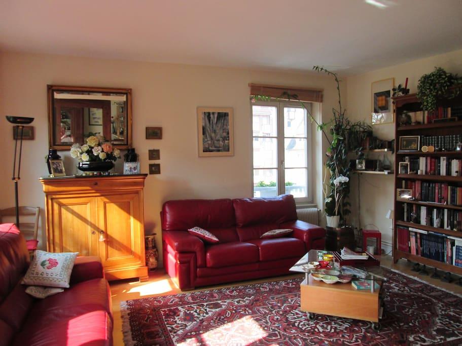 Charmant appartement alsacien petite france appartements - Appartement meuble a louer strasbourg ...