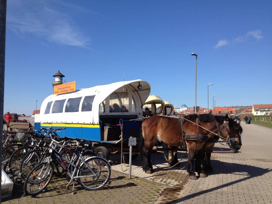 der Pferdebus bringt Euch vom Hafen zum Loog