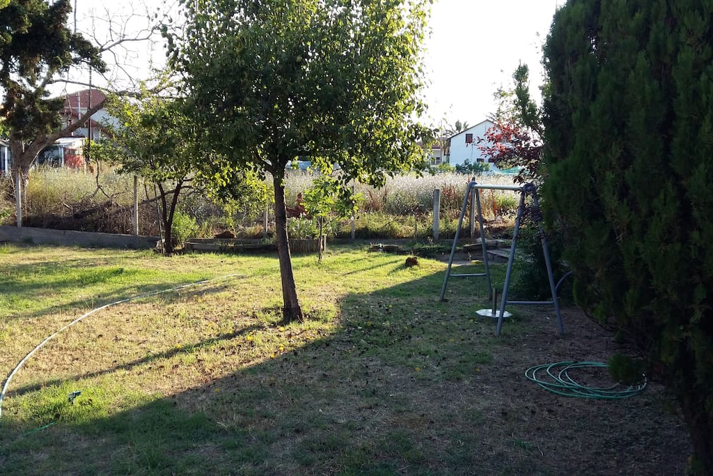 Yard with swing and play, perfect for afternoon relaxation during sunset