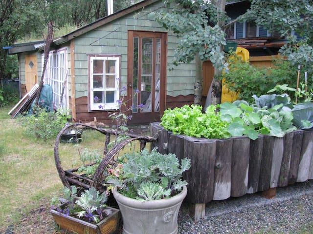 Enjoy the quiet garden