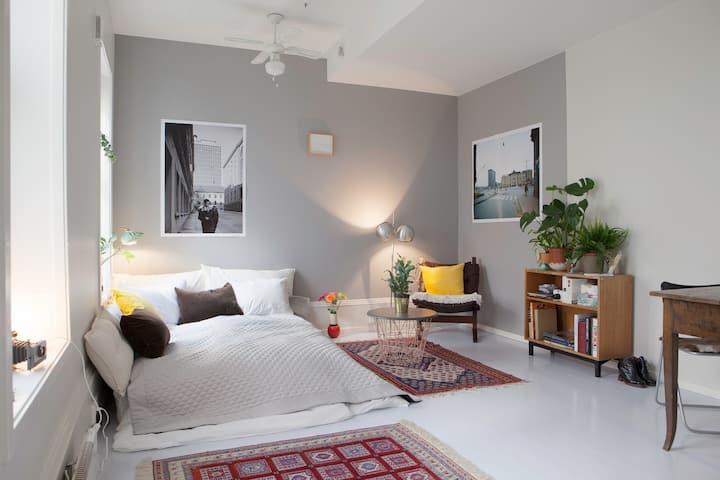 Cozy, modern studio in the heart of the city