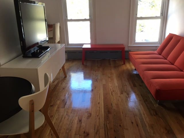 PRIVATE SPACE : L TRAIN BEDFORD STOP! - Brooklyn - Apartment