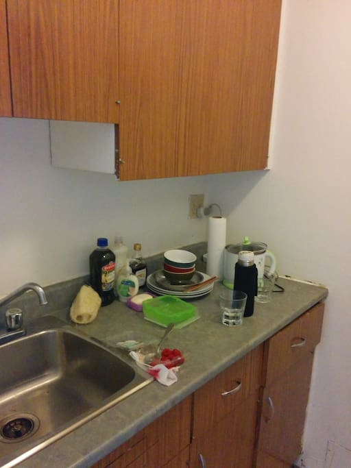 Rooms For Rent Near Mcgill University Montreal