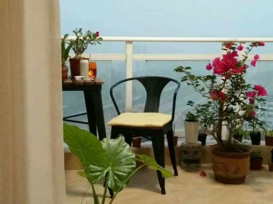 观景阳台上的清晨,宁静浪漫。