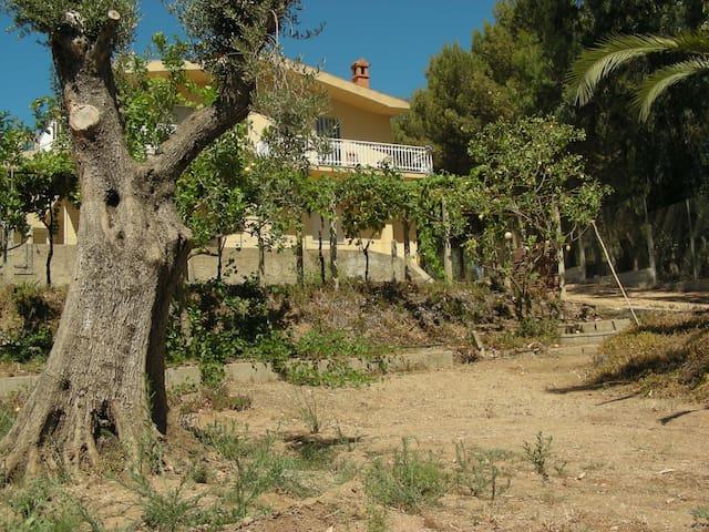 Appartamento sulla spiaggia - Bari Sardo - Apartamento